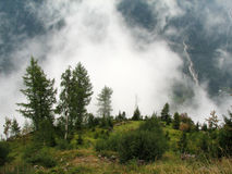 Foggy mountains. In summer time Stock Images