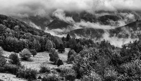 Foggy mountains Royalty Free Stock Images