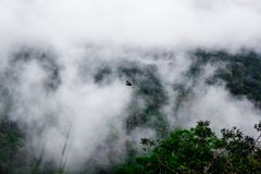 Foggy mountains surrounding  low clouds and Hornbills Fly in Thailand Royalty Free Stock Photos