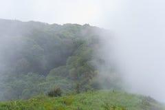 Foggy moutain Stock Photo