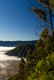 Foggy Mt. Batok. Side shoot of Mt Bromo Stock Photos