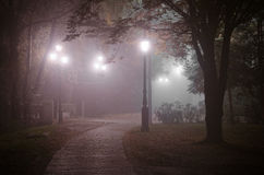 Foggy night in November Stock Image
