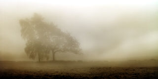 Foggy november landscape Royalty Free Stock Photography