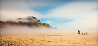 Foggy  coast Stock Photography