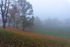 Foggy outdoor sports center beautiful landscape stock images