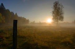 Foggy panorama landscape of Swedish autumn field Stock Photo