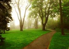 Foggy park Stock Photo