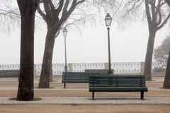 Foggy park trees and benches Stock Photos