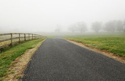 Foggy Path Stock Image