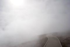 Foggy path Royalty Free Stock Image