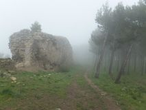 Foggy path between forest and old city wall. Foggy path between coniferous forest and old stone city wall. Jaén, Spain royalty free stock photography