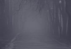 Foggy path Royalty Free Stock Photo