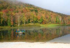 Foggy Pine Hill Lake Stock Photos