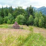 Foggy pine tree highland forest and hay stacks. Carpathian, Ukraine Stock Image