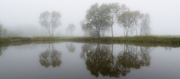 Foggy pond. At calm morning with nice reflections Stock Image