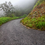 Foggy Puerto Rico Road Royalty Free Stock Images