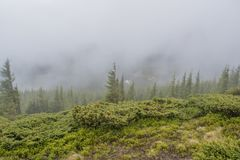 Foggy raining day at the mountains Royalty Free Stock Photos