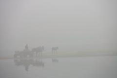 Foggy ride Stock Photos