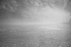 Foggy river in black and white. Flowing river in the fog in black and white with woods and trees in the background Royalty Free Stock Image