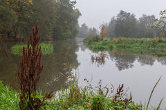 Foggy river in fall Stock Photos
