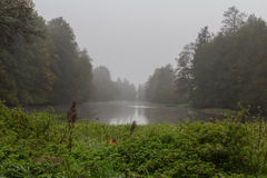 Foggy river in fall Royalty Free Stock Image
