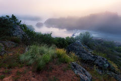 Foggy river morning Stock Images