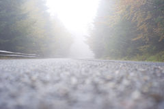 Foggy road. Wet mounain road in the foggy day. Carpathians Mountains, Romania Stock Photography