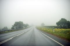 Foggy road. Stock Photography