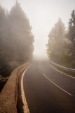 Foggy road in forest, street in misty forest Royalty Free Stock Photography