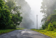 Foggy Road in the Mountains Royalty Free Stock Image