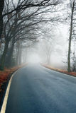 Foggy road. Near the forest in autumn Stock Images