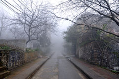 Foggy road. At Sapa Honoi the misty in the morning time Stock Images