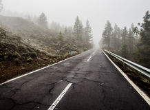 Foggy road to volcano Teide Stock Images