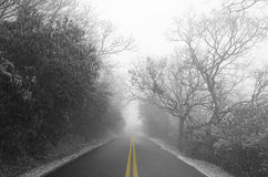 Foggy Road in the Winter Stock Photos
