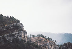Foggy Rocky Mountains Cliff With Forest Landscape Royalty Free Stock Photos