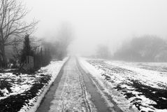 Foggy rural road Stock Image