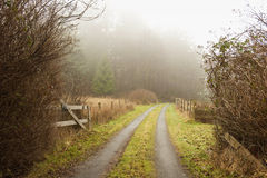 Foggy Rural Roadway. The entrance to a farm on a foggy morning adds an inviting element to this classic rural scene on Lummi Island located in the Puget Sound Royalty Free Stock Image