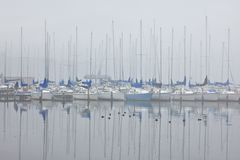 Foggy Sailboat harbor Stock Photography