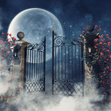 Foggy scene with a gothic gate. And rose vines at night Stock Image