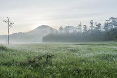 Foggy scenic near Ho Tuyen Lam lake, Da Lat city, Vietnam Stock Images