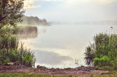 Foggy sky and green grass by the lake. Morning landscape on the lake royalty free stock photo