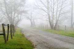 Foggy Sparks Lane. Springtime horizontal view of Sparks Lane in Great Smoky National Park, Tennessee, on a foggy morning with copy space Royalty Free Stock Photography