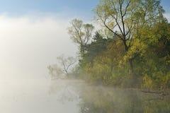 Foggy Spring Landscape Stock Photo