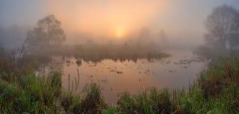 Spring sunrise. Sunrise on the lake Stock Photos