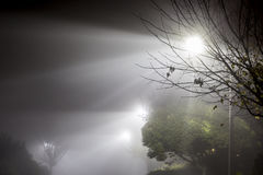 Foggy Street at Night Royalty Free Stock Photography