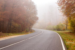 Foggy street with reduced visibility. Autumn empty street due to reduced visibility with golden trees in a foggy morning during fall season Stock Photos