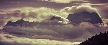 Foggy summer morning in the Alps use as background. Stock Images