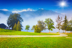 Foggy summer morning on the Bohinj lake in Triglav national park Royalty Free Stock Image