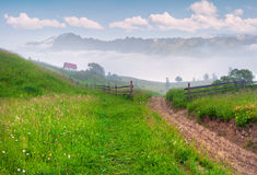 Foggy summer morning in mountain village Stock Photography