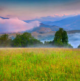 Foggy summer morning in the mountain village. Stock Photos